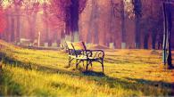 chairs-in-green-garden-in-sunset.jpg